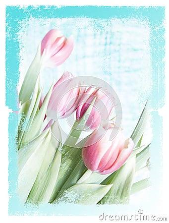 Dreamy floral paper