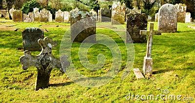 Dreamy graveyard