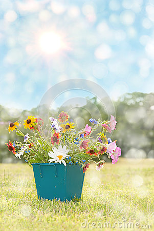 Dreamy image of spring flowers in a square pot