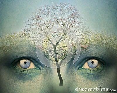 Dreamy mind
