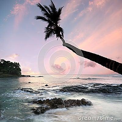 Dreamy Seychelles