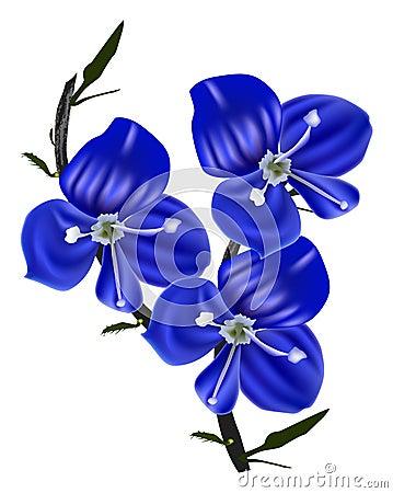 kleine blaue blumen kleine blaue blumen stockfoto bild. Black Bedroom Furniture Sets. Home Design Ideas