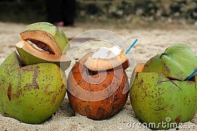 Drei Kokosnüsse