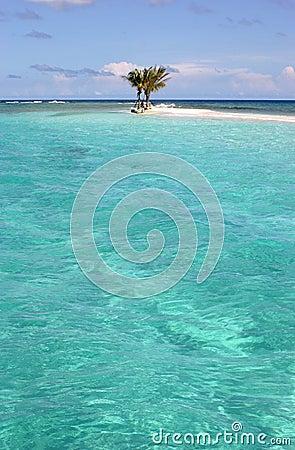 Zu verkaufen Sand Dollar Virgin Insel