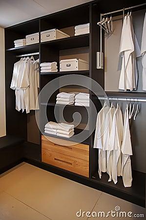 Free Dress Closet Royalty Free Stock Photos - 26960878