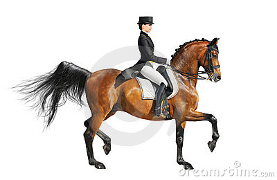 Dressage equestrian sport
