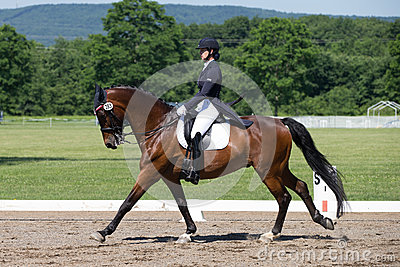 Dressage FEI Prix St. Georges Editorial Photo