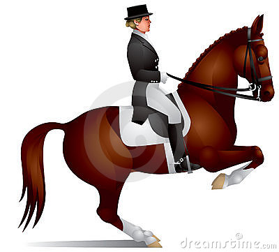 Dressage Horse Perform Figure Levada Royalty Free Stock Image - Image: 15265456