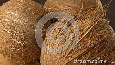 Drie bruine rijpe tropische kokosnoten die op een zwarte achtergrond roteren Tropisch vruchten en voedsel looping stock videobeelden