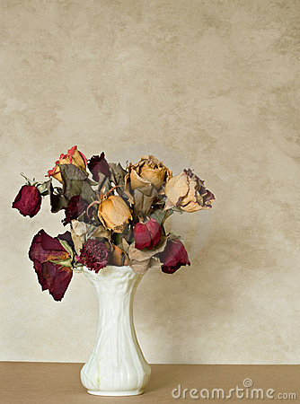 Free Dried Bouquet Royalty Free Stock Photo - 7685725