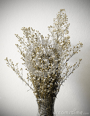 Dried bouquet of white flowers in vase