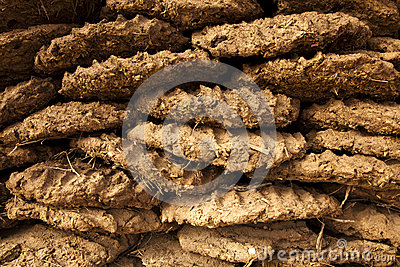 Dried Cow Dung Fuel