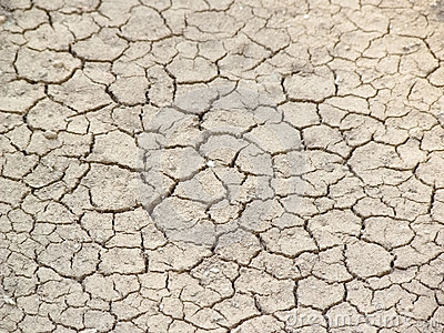 Dried and cracked earth texture