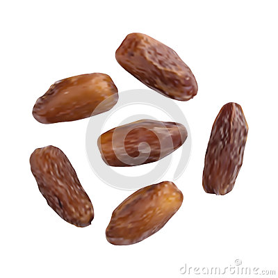 Dried Dates Isolated on White Background Vector Illustration Vector Illustration