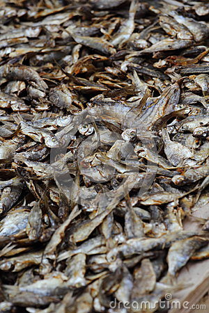 Dried Fish in market