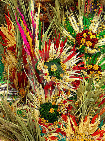 Free Dried Flower Composition Stock Photo - 480380