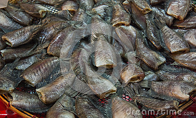 Dried fresh snakeskin gourami