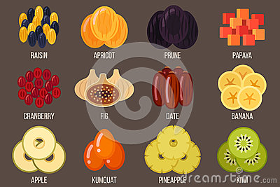 Dried fruits Vector Illustration