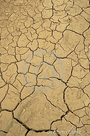Free Dried Lakebed Royalty Free Stock Photography - 11264247