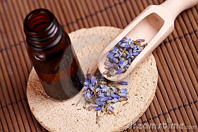Dried lavender petals with macerated oil