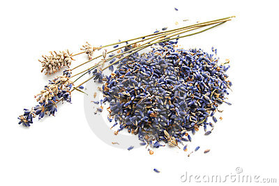 Dried Lavender Stems and Buds