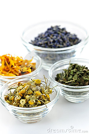 Free Dried Medicinal Herbs Stock Photos - 16125643