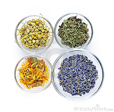 Free Dried Medicinal Herbs Stock Photo - 16249090