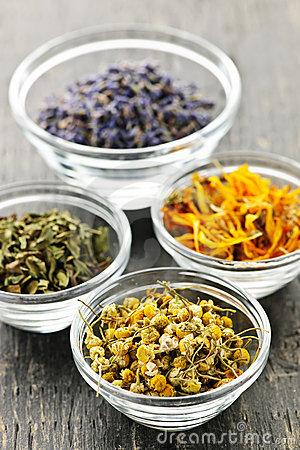 Free Dried Medicinal Herbs Royalty Free Stock Image - 16249166