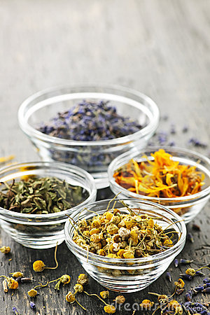 Free Dried Medicinal Herbs Stock Image - 16249271
