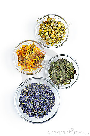 Free Dried Medicinal Herbs Royalty Free Stock Photography - 16305727
