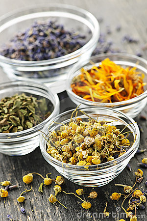 Free Dried Medicinal Herbs Stock Images - 16305924