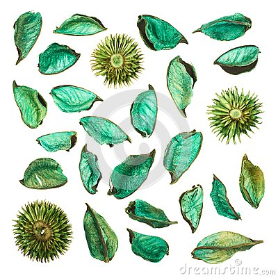 Free Dried Medley Potpourri Leaves Isolated Royalty Free Stock Photo - 45408775