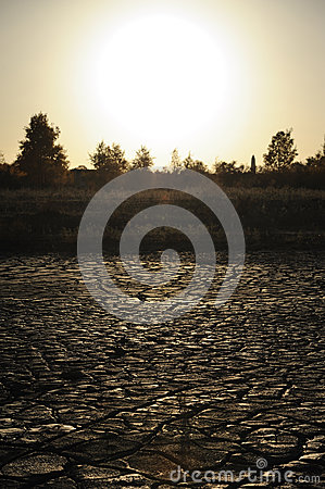 Dried mud at sunset