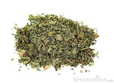 Dried nettle tea