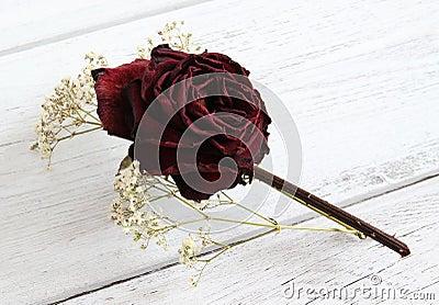 Dried rose and gypsophila