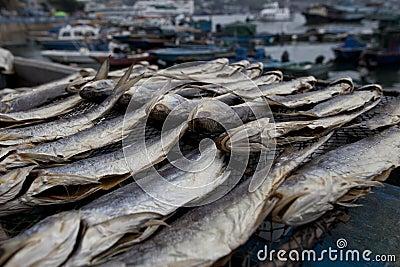 Dried salted fish display