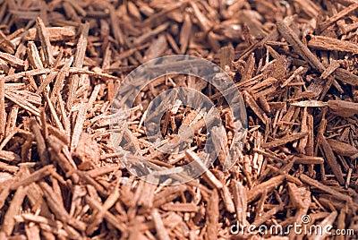 Dried sandalwood