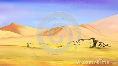 Dried Small Tree in the Desert Stock Photo