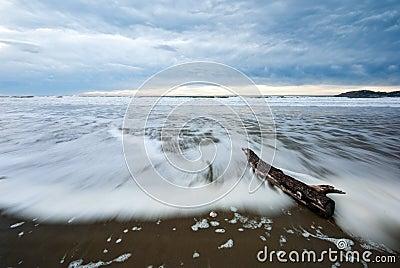 A driftwood log on a beach at dawn