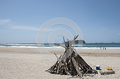 Driftwood structure on beach.