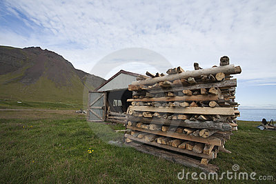 Driftwood in West Iceland