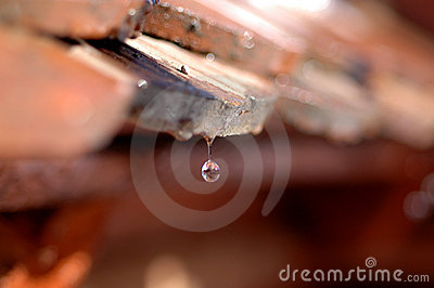 Dripping roof - waterdrops