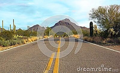 Drive through the Sonoran desert