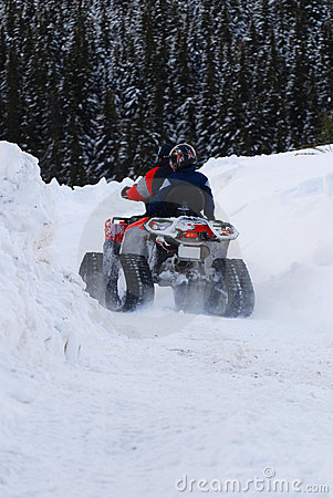 Free Driving A Snowmobile Royalty Free Stock Photos - 3950418