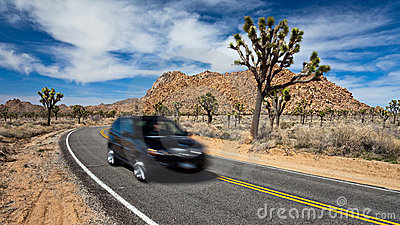 Driving in Joshua Tree