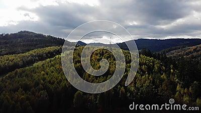 4.000 drones de bosque polaco y montaña metrajes