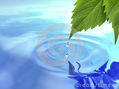 Drop fall from leaf on ripple water.