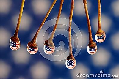 Drops ang Flag