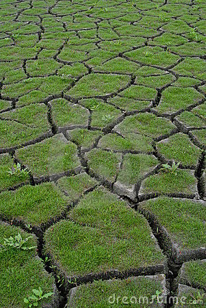 Free Drought 2 Stock Photography - 2216932