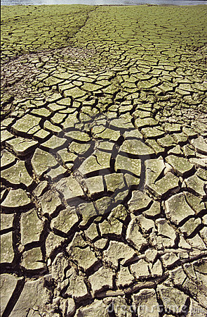 Free Drought Royalty Free Stock Photos - 904888